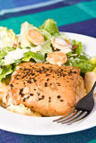 Seafood Filo with Caesar Salad. Seafood mornay filo pastry with caesar salad in white bowl with fork Stock Images