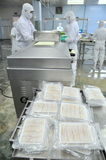 Seafood finished products are prepared for weighing and vacuum packaging in a seafood factory in Vietnam Stock Images