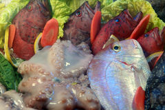 Seafood and fish Stock Photo