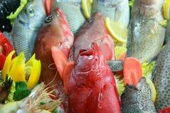 Seafood and fish Stock Image
