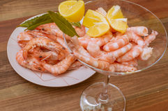 Seafood, Fish. Cup With cooked prawns Royalty Free Stock Photos