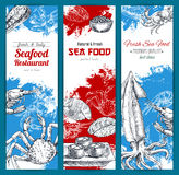 Seafood and fish food sketch banners set Royalty Free Stock Image