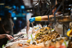 Seafood at the fish market. BARCELONA, SPAIN - AUGUST 20: seafood at the fish market on Augu Stock Image