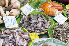Seafood at the fish market. Fresh fish in the market Royalty Free Stock Images