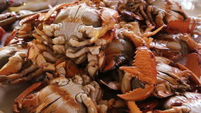 Seafood at the fish market stock video footage