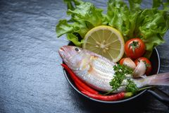 Seafood fish plate with herbs and spices lemon tomato chilli garlic parsley and vegetable ocean gourmet dinner. / Fresh raw fish for cook on pan in the royalty free stock photography