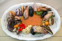 Seafood and fish on porcelain plate. Different varieties of fish and seafood on a porcelain plate Royalty Free Stock Photos