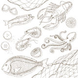 Seafood and fish set. Seafood hand drawn elements. Sea food and fish sketch illustrations. Fresh fish doodle. Seafood hand drawn vector. Seafood gourmet.Top Stock Photos