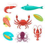 Seafood flat kit. Fish, shrimp, crab, mussels, oyster. Stock Photos