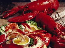 Seafood, Food, Lobster, Decapoda royalty free stock images