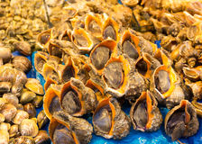 Seafood in food market Stock Photo
