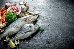Seafood. Fresh fish, baby octopuses, crab, oysters with garlic, herbs and lime stock image