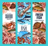 Vector banners fresh seafood fish product sketch. Seafood and fresh fish product banners of marlin, octopus or squid and bream, anchovy or trout and fisherman Royalty Free Stock Photos