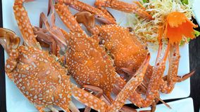 Seafood. Fresh seafood in the local sea. Steamed crab. royalty free stock photo
