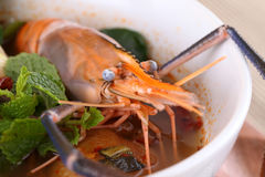 Seafood fresh shrimp Royalty Free Stock Images