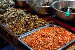 Seafood and freshwater food on the counter of the Chinese market. stock photography