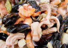 Seafood frozen Stock Photos