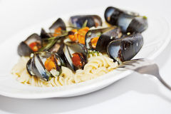 Seafood fusilli pasta close-up Stock Photography