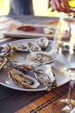 Seafood and glass of wine. Natural light Stock Image