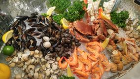 Seafood good taste. Seafood buffet in Thailand Stock Image
