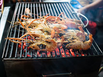 Seafood on grill in shop Royalty Free Stock Photo