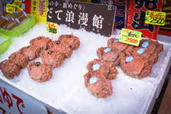 Seafood, Hakkodate morning market. Stock Images