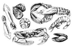 Seafood hand drawn collection Royalty Free Stock Photos