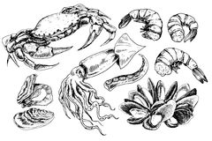 Seafood hand drawn collection Royalty Free Stock Images