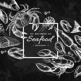 Seafood hand drawn vector framed illustration. Engraved style blackboard template. Seafood hand drawn vector framed illustration. Crab, lobster, shrimp, oyster Royalty Free Stock Images