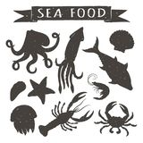 Seafood hand drawn vector illustrations isolated on white background, elements for restaurant menu design, decor, label. Vintage silhouettes of sea animals Royalty Free Stock Image