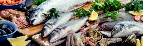 Seafood. Healthy diet eating. View from above Stock Photo