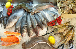 Seafood on Ice. Seafood,  fish and vegetables on Ice Stock Photos
