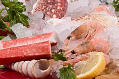 Seafood with ice Royalty Free Stock Photo