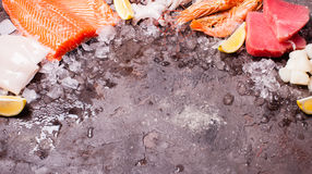 Seafood on the ice Royalty Free Stock Photography