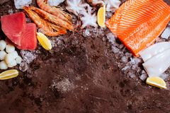 Seafood on the ice. Border top view with empty space for text Stock Photo