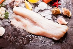 Seafood on the ice. Cod fillets close up on the brown slate background Stock Image