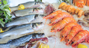 Seafood. On ice at the fish market Royalty Free Stock Photo