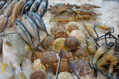 Seafood on ice at the fish market Royalty Free Stock Photo