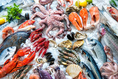Seafood on ice. At the fish market Stock Photography