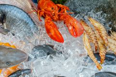 Seafood on ice at the fish market. Color image - Seafood on ice at the fish market Stock Image