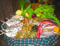 Seafood on ice at the fish market. The fresh seafood on ice at the fish market Stock Photography