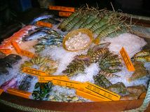 Seafood on ice at the fish market. The fresh seafood on ice at the fish market Stock Image