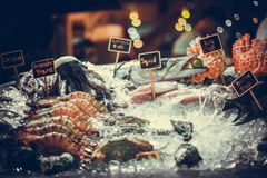Fresh seafood on ice at the fish market. Seafood on ice at the fish market Royalty Free Stock Images