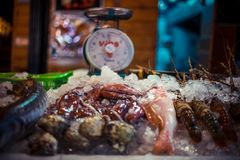 Fresh seafood on ice at the fish market. Seafood on ice at the fish market Stock Photo