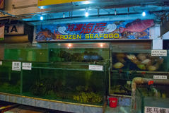 Seafood on ice at the fish market. Variety of grilled seafood in Kota Kinabalu market. Malaysia Royalty Free Stock Photos