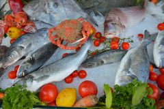 Seafood on ice. Fresh Seafood on ice at the fish restaurant Royalty Free Stock Photos