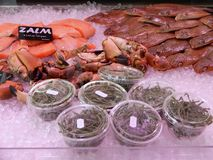 Seafood on ice Royalty Free Stock Image