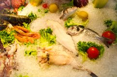 Seafood on ice. A lot of different seafood on ice Royalty Free Stock Photo