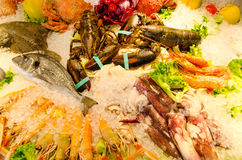 Seafood on ice Royalty Free Stock Photos