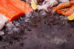 Seafood on the ice. Border top view with empty space for text Stock Photography